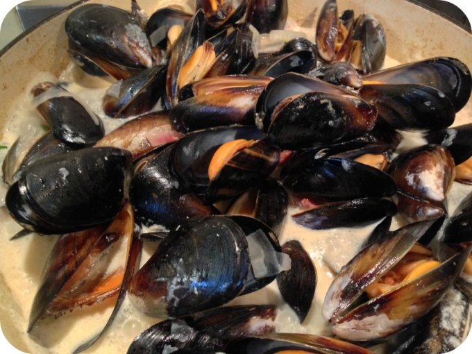Mussels in Cider // Moules Cidre